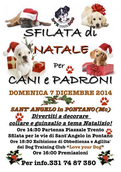 Sfilata Di Natale Per Cani E Padroni Santangelo In Pontano Mc 07